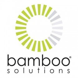 Bamboo Solutions Phone System Accessories