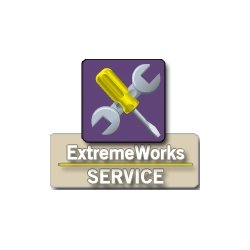Extreme Networks - 97004-ZR-XFP - Extreme Networks ExtremeWorks - 1 Year Extended Service - Service - Exchange - Physical Service