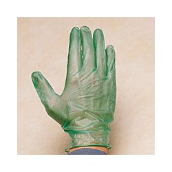 Lowrie & Co - FG410S - Glove Disposable Powder Free Lab Safety Supply Vinyl Small 10 In L 5 Mils Beaded Lowrie & Carbon Monoxide, BG