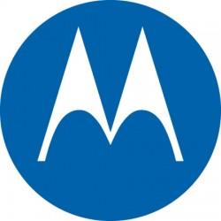Motorola - 5886055Y01 - Female N to Male QN Adapter